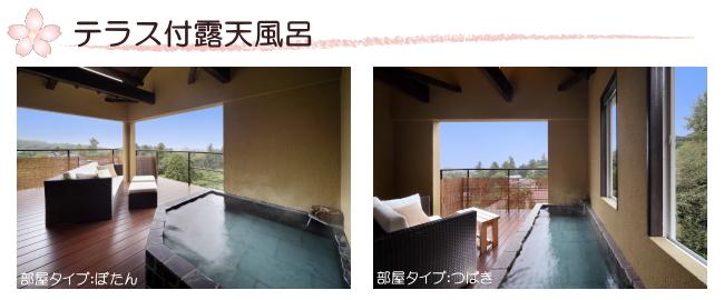 http://www.izu-hanairotei.com/img/20150131165737.jpg